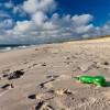 Angeschwemmtes Strandgut auf Sylt